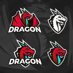 Creative dragon logo template. Sport mascot design. College league insignia, Asian beast sign, Dragons illustration