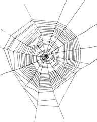 hand drawn spiderweb