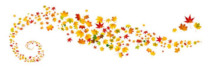Bunte Herbstblätter als Panorama vor weißem Hintergrund