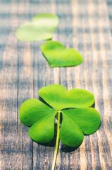 Petal of clover on old wooden background. St. Patricks Day green shamrock . Vintage effect.