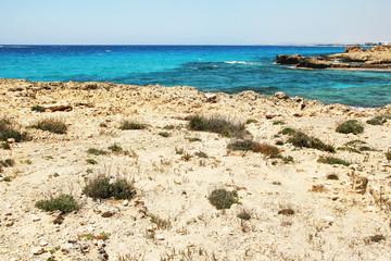 Sea shore with rocks landscape