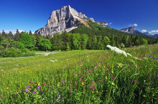 montagne du granier - vallée des entremonts en chartreuse