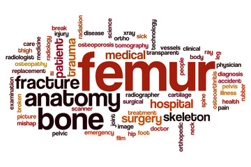Femur word cloud