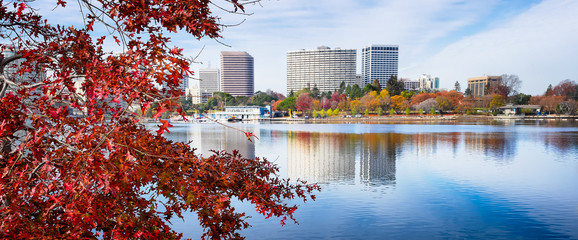 Oakland, California Lake Merritt view framed by foreground red maple leaf tree  Wall mural