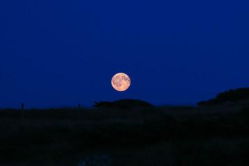 Night sky with full moon.