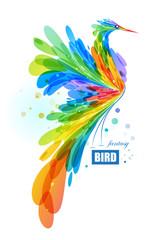 Colorful fantasy bird