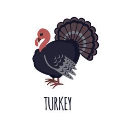 Turkey icon in flat style.