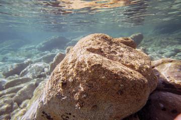 Sott'acqua ricci marini rocce e mare pulito in sardegna