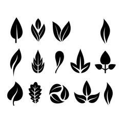 Leaf icon vector illustration.