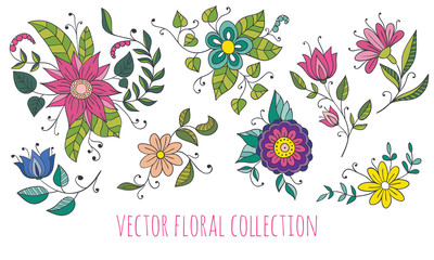 Vector floral collection with hand drawn flowers