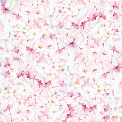 Watercolor painting. Pastel pink floral background.