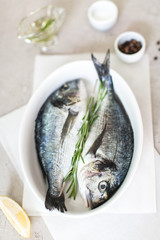 Fresh dorado fish with herbs and pepper