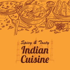 Hand drawn of Indian food and spices, vector