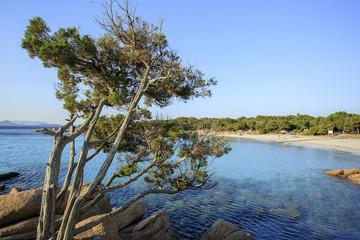 Il mare della sardegna, acqua trasparente e colori meravigliosi
