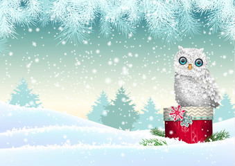 Christmas theme, white owl sitting on red gift box in snowy landscape, illustration