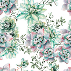 Water color pattern with succulents . Illustration