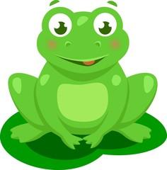 Cute Frog Cartoon Vector Isolated