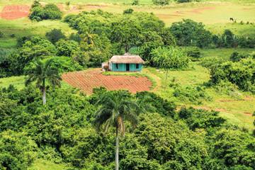 mogotes in Vinales Cuba