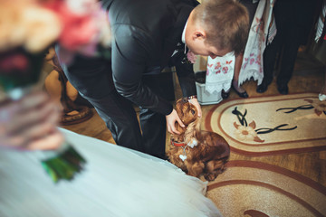 groom playing with dog at home