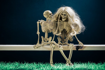 still life photography : skeletons couple amorously at night