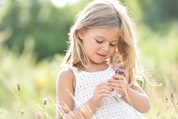 Portrait of cute little blond girl picking flowers in field