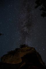Milchstraße mit einem Fels und Baum