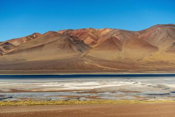 altoandina lagoon in Atacama