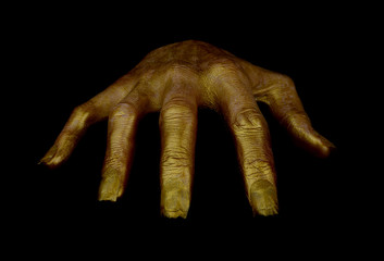 terrible hand gold color