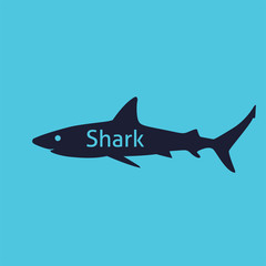 Shark silhouette isolated