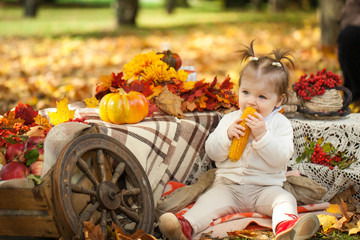 Young girl eating boiled corn in autumn park