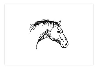 Head Horse Drawing Style