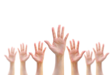 Many people blur hands raising up upward on white background showing vote, volunteering, participation concept/ campaign