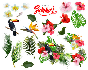 A set of   tropical flowers,  palm leaves, Toucan. Summer  background Concept with tropical flowers hibiscus.  Template Vector.
