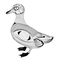 vector duck. black and white zentangle stylized bird