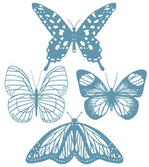 vector set of isolated hand-drawn butterflies