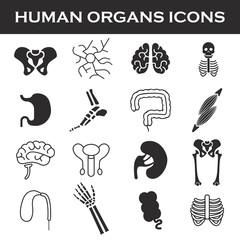 Himan organs icon set