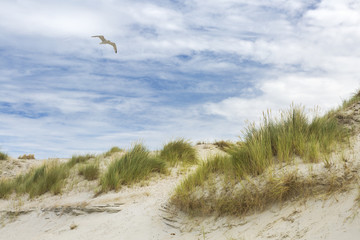Sandstrand Ruhe am Meer