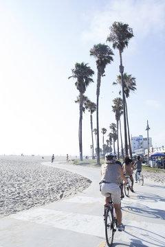 ベニスビーチ ロサンゼルス
