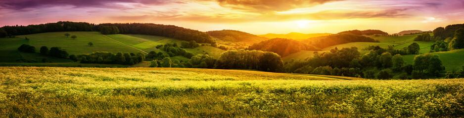 Foto op Canvas Platteland Blühende Wiese bei Sonnenuntergang, ein Panorama mit stimmungsvollen Farben