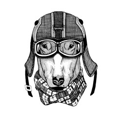 Vintage vector images of dogs for t-shirt design for motorcycle, bike, motorbike, scooter club, aero club
