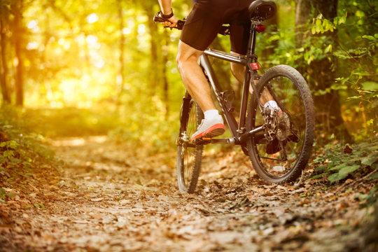 cyclist man riding mountain bike