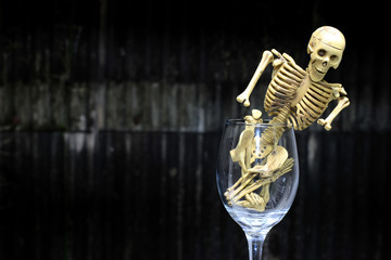 Still life Photography human skull in a glass of wine.
