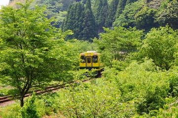 新緑の中を走るいすみ鉄道