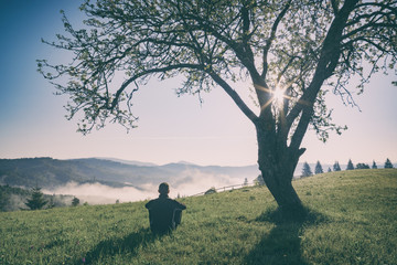 Man sitting on a hill under the tree