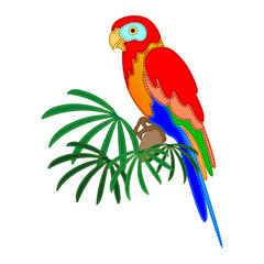 Colorful parrot sitting on a palm tree on a white background