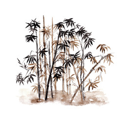 Bamboo in Chinese style. Watercolor hand drawn illustration.