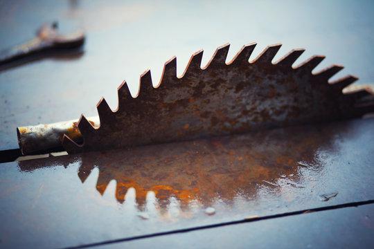 Sawmill blade reflection
