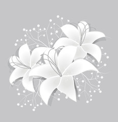 Vector White lilies