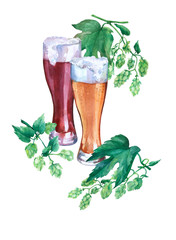 Glasses with light and dark beer. Branch green hops. Watercolor illustration on white background. Concept of bar, pub, beer demonstration and Oktoberfest.