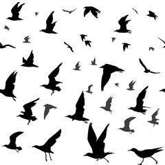 Birds silhouettes seamless